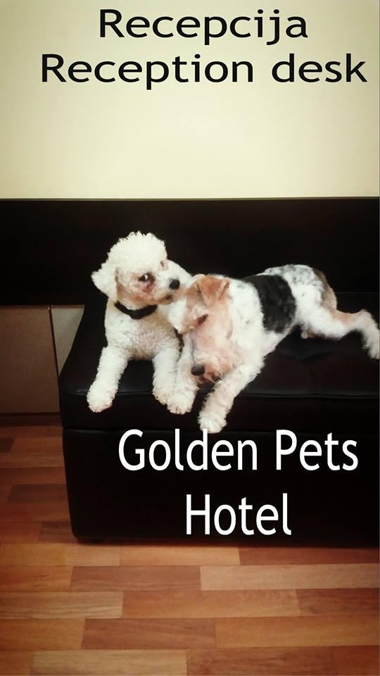 Golden Pets Hotel